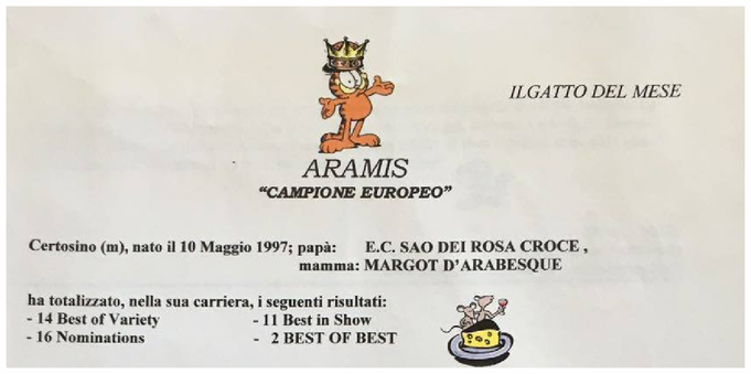 Nel Segno Di Aramis Blau Reiter Certosini Della Conca D