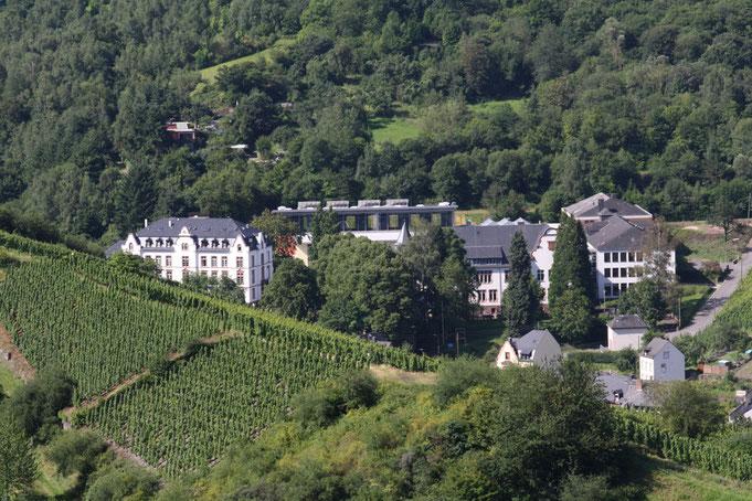 Alumnat (links) und Gymnasium (rechts), Blick von der Grevenburg