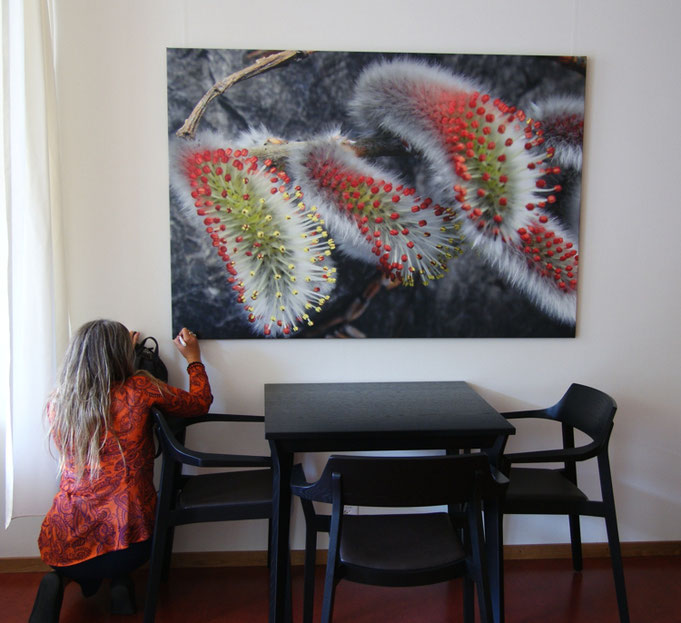 Leinwandfotos grosse Leinwand Fotoleinwand Galerie Fotokunst