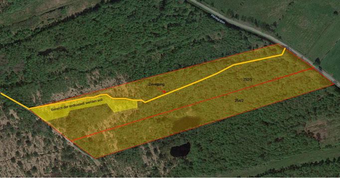 Zwei der NABU-Flächen, wo im Herbst 2020 in einem ersten Renaturierungsschritt entkusselt werden soll.