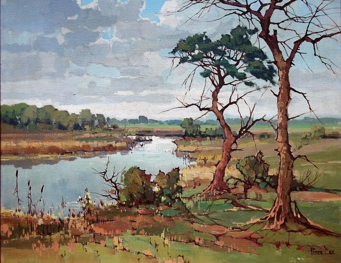 Peter Cox, schilderij olieverf landschap te koop.