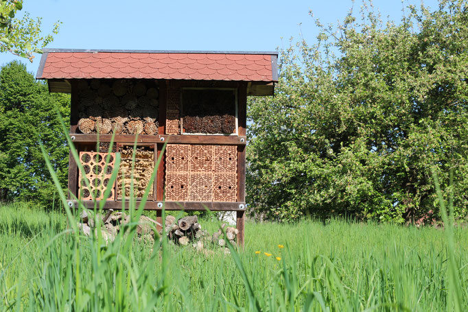 Insektenhotel auf der grünen Wiese