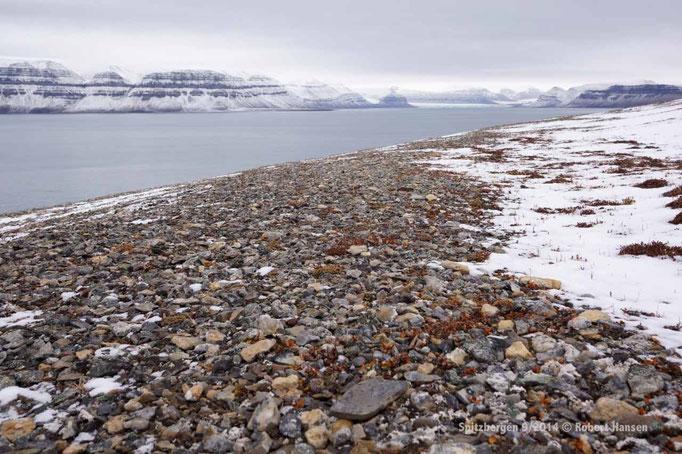 Tempelfjorden - Svalbard 9/2014 © Robert Hansen