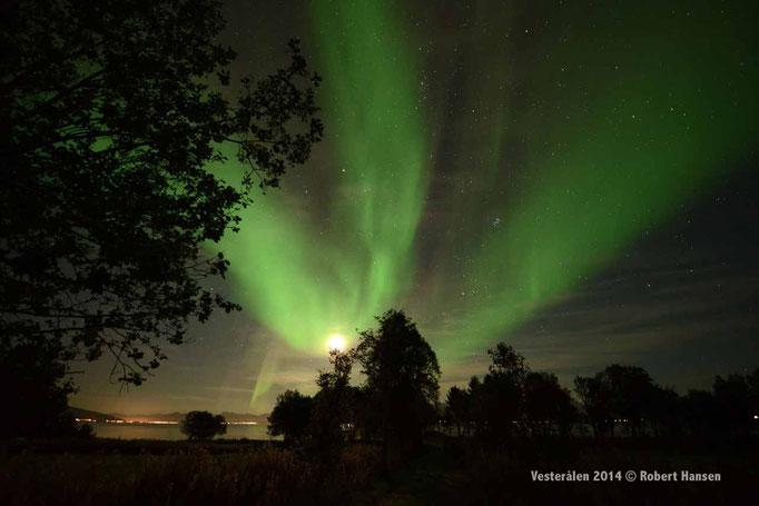 Nordlys - Polar Light - Nordlicht. Hadsel/Vesterålen, 17.09.2014, 00:50 © Robert Hansen