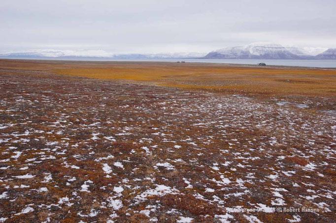 Vindodden / Høgskulefjellet - Svalbard 9/2014 © Robert Hansen