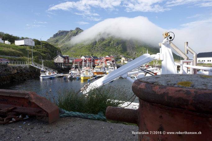 Bø auf den Vesterålen ist Ausgangpunkt von Walsafaris © Robert Hansen