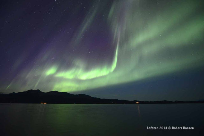 Nordlys - Polar Light - Nordlicht. Svartskard/Lofoten, 01.09.2014, 00:42 © Robert Hansen