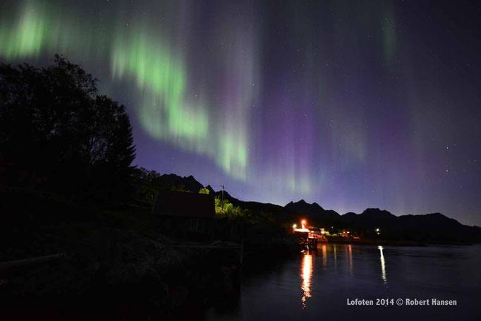 Nordlys - Polar Light - Nordlicht. Svartskard/Lofoten, 01.09.2014, 01:30 © Robert Hansen