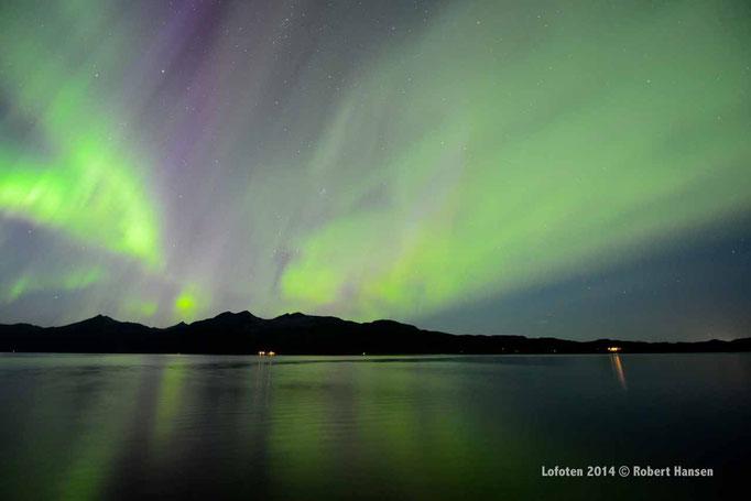 Nordlys - Polar Light - Nordlicht. Svartskard/Lofoten, 01.09.2014, 01:20 © Robert Hansen