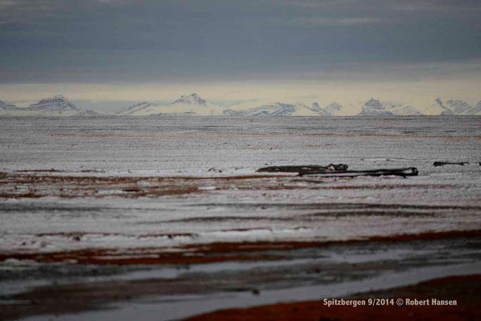 Ramfjellet / Syltoppen - Svalbard 9/2014 © Robert Hansen