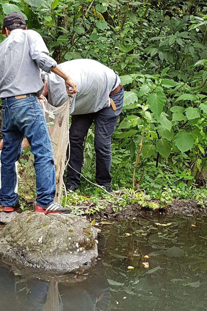 Netzt auseinander sortieren und Fische in den Eimer werfen bzw. von der Erde einsammeln und danach in den Eimer werfen