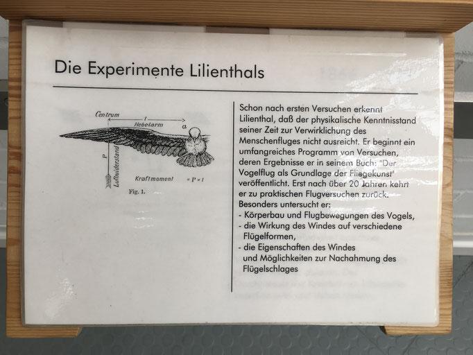 Akribisch dokumentiert Lilienthal Flugeigenschaften