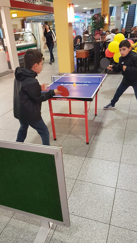 Tischtennis mieten