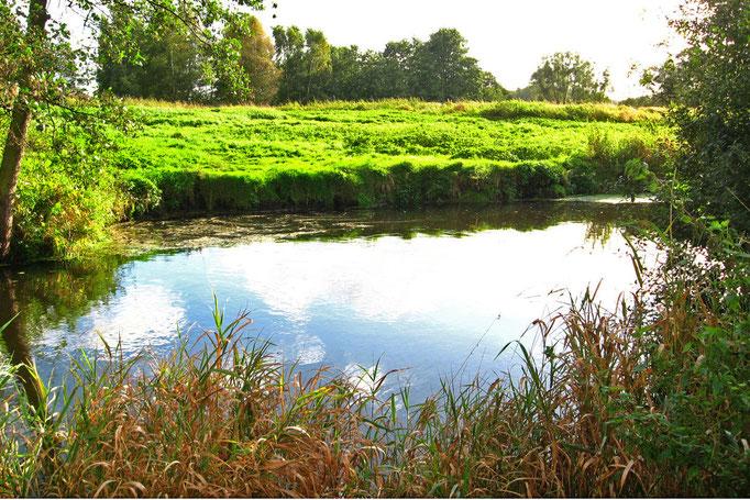 Quell-Kolk vom rechten Ufer aus gesehen, Blickrichtung nach Süd (9.10.12)
