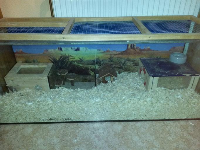 Unser 120x40x50 cm (LxBxH) Aquarium