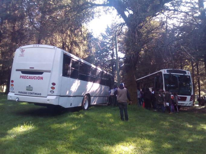Camiones de turismo para excursiones, balnearios, pueblos mágicos, viajes familiares
