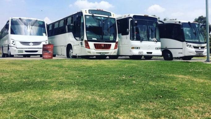 Camiones de turismo para excursiones familiares y de amigos