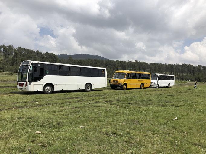 Renta de transporte escolar de personal y turismo para salidas escolares, scouts, alpinismo, senderismo
