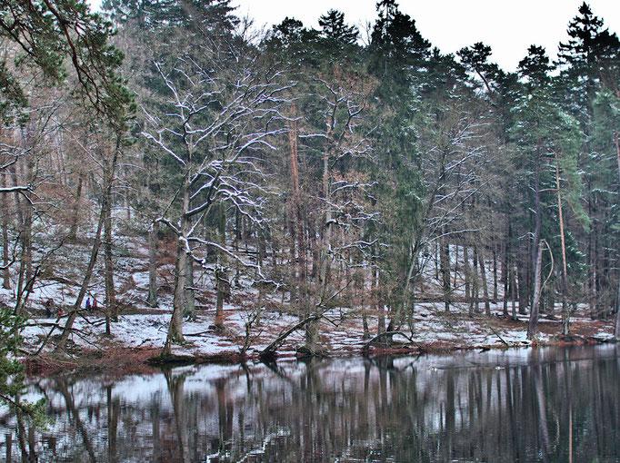Donoperteich im Winter