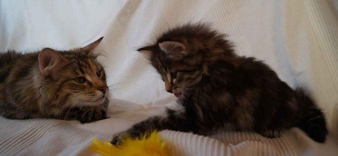 Fiona (Smilla) und Cody