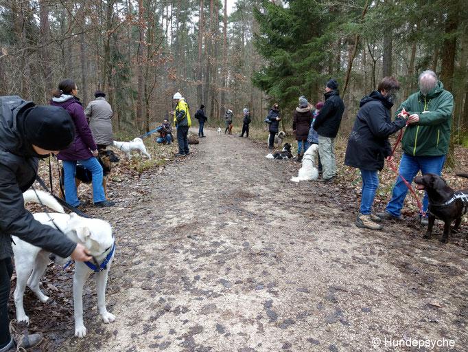 Unterwegs Training Wald