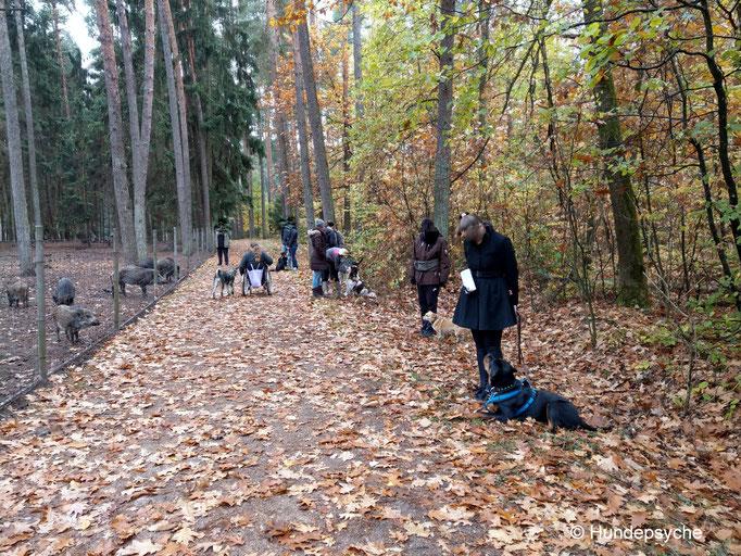 Faberhof Wildpark