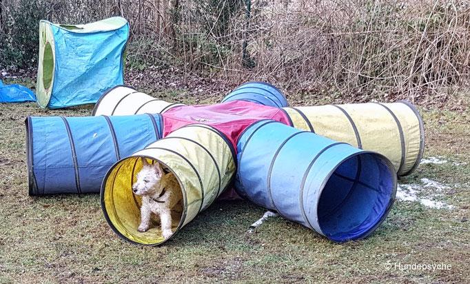 Tunnel als Schutz