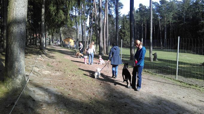 Ausflug zum Wildpark