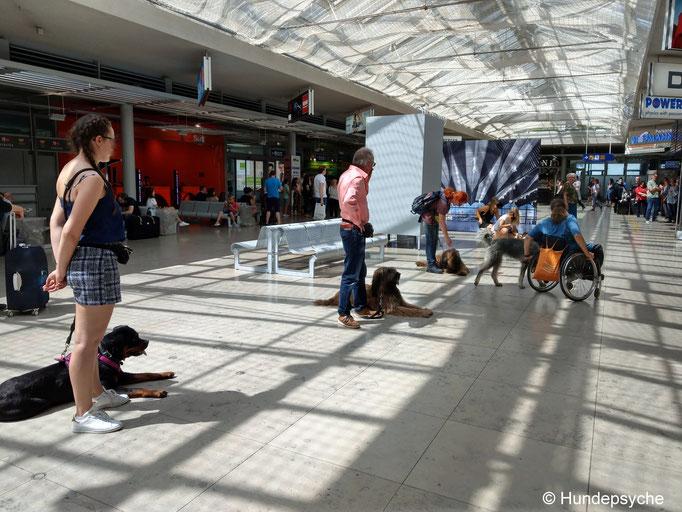 Ankunftshalle des Nürnberger Flughafen