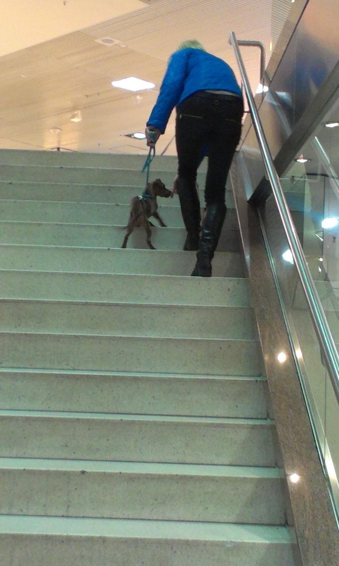 langsames Treppensteigen