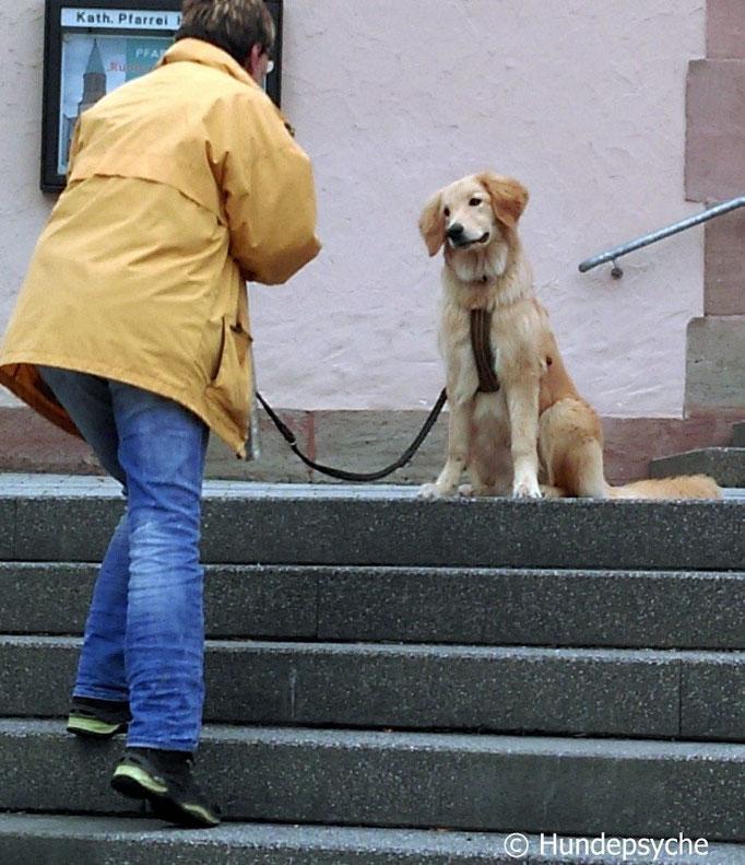 Sitz an Treppe