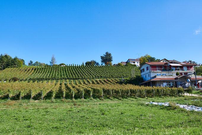 Weingut Besson- Strasser