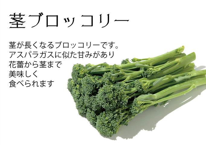 【アオベジ】茎ブロッコリー