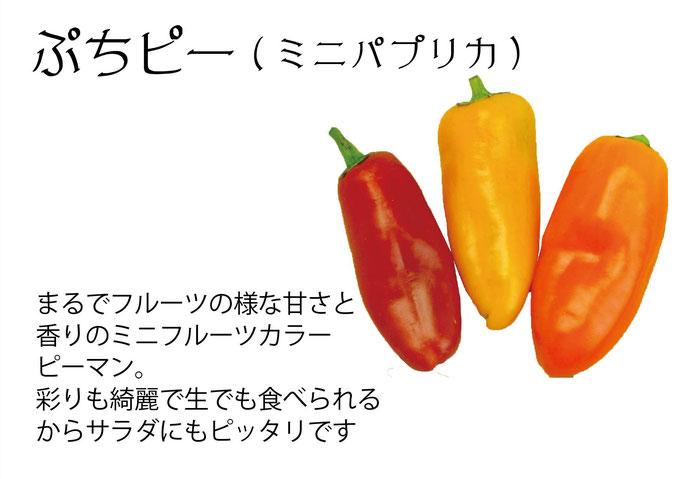 【アオベジ】ぷちピー