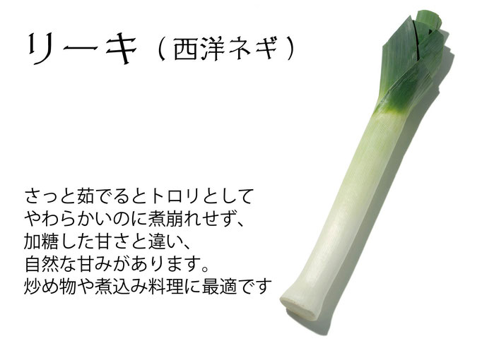 【アオベジ】リーキ
