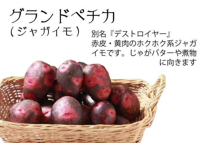 【アオベジ】グランドペチカ(デストロイヤー)