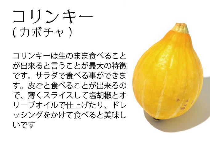 【アオベジ】コリンキー