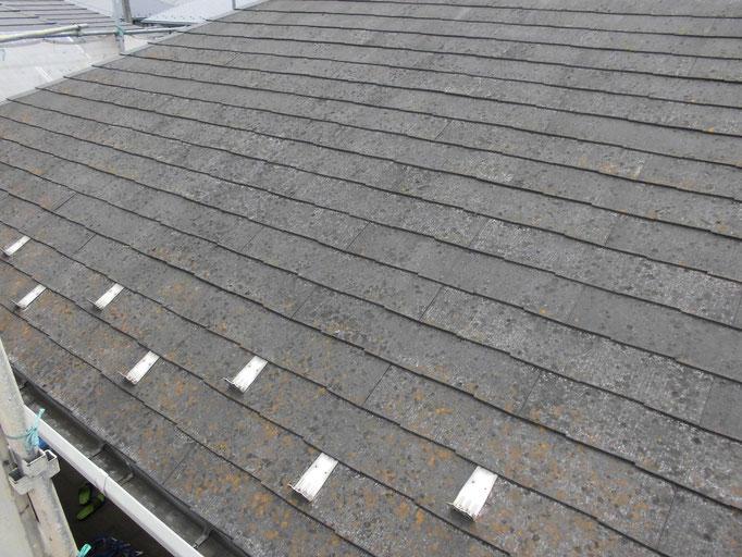屋根(スレート)/コケ、藻、汚れの付着