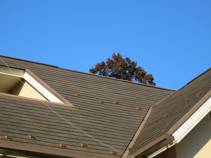 屋根/退色