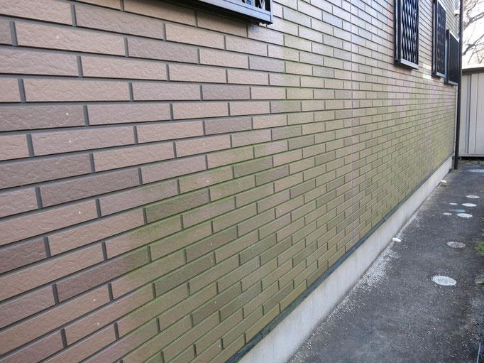 外壁(サイディング)/汚れやコケの付着