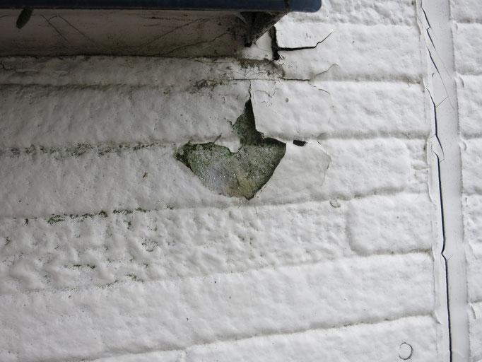 外壁/塗膜の剥がれ