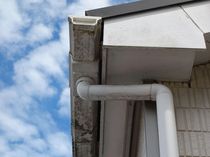 軒天、雨樋下場/汚れ、苔の付着