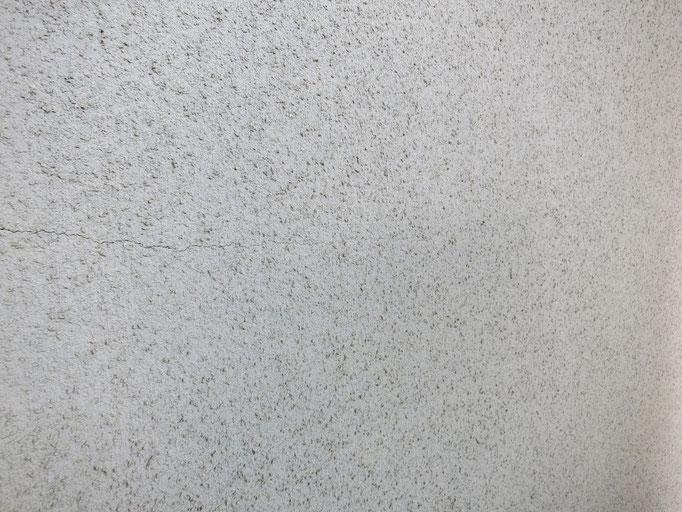 外壁(モルタルリシン吹き)/退色、クラック