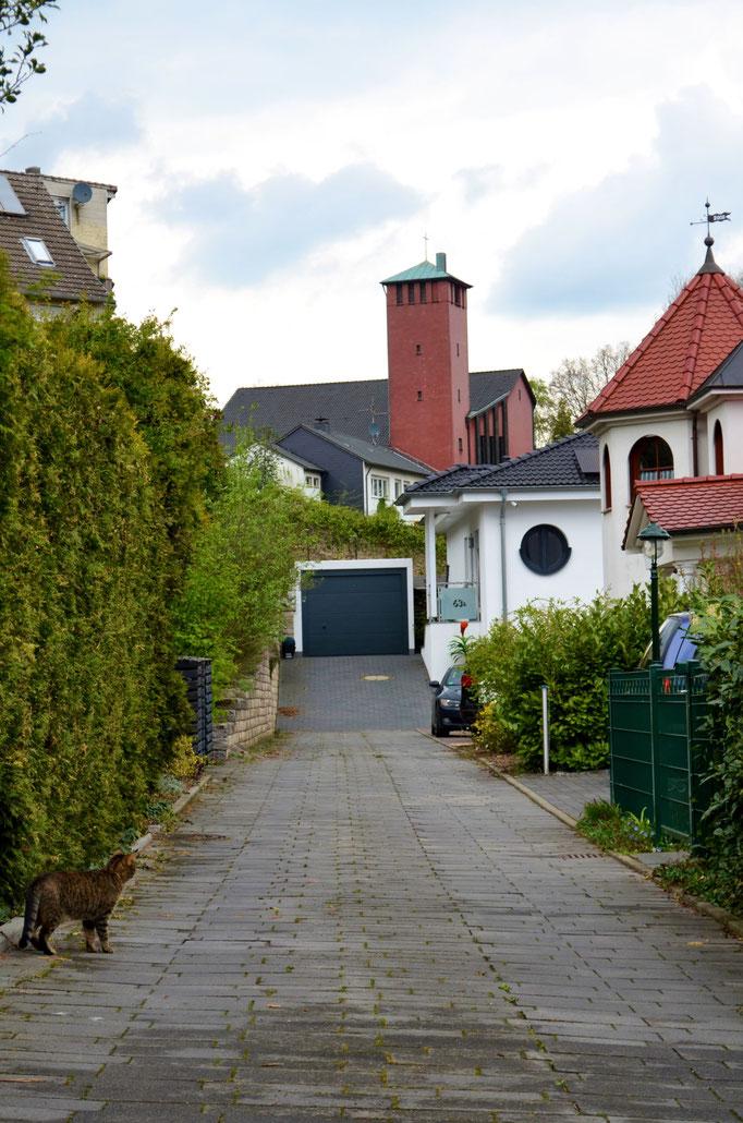 Stichwort: Nachbarschaft - Willkommenskultur im Bistum Essen © Dorothee Hoppe, theelightphotography