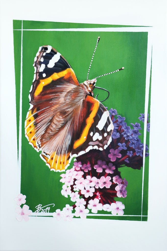 Schmetterling (Admiral) - 40x60cm - Acryl auf Leinwand