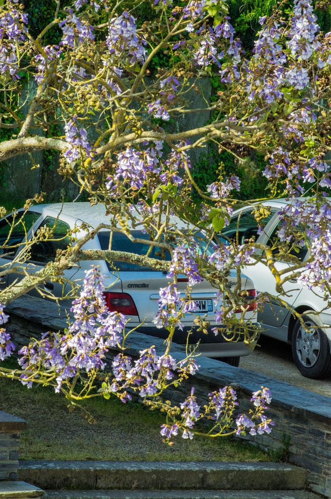 Parking Christian De Grandmaison