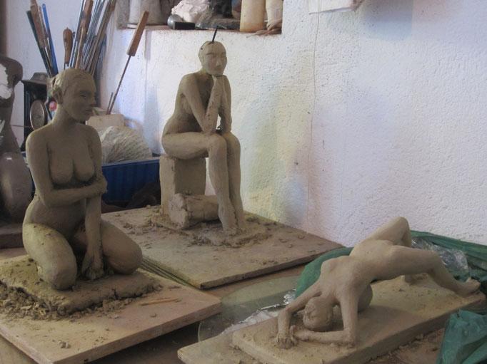 études de nus. travail en cours 2014.