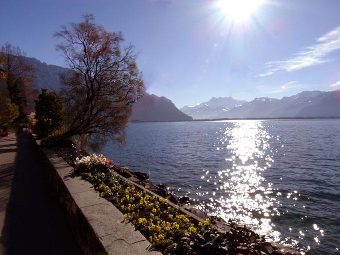 Lac Léman, Montreux, Suisse