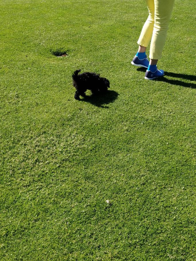 ...Golfen find ich cool ... 3,5M