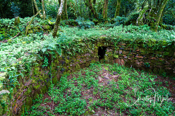 Prehistorical wall buildings in Nyanga National Park